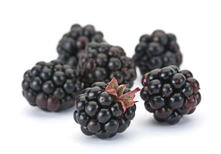 Sweet Blackberry berry closeup isolated on white background Stock Photo - 8633755