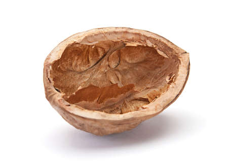 Walnut brown nut closeup on white background