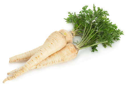 Parsnip root with leaf isolated on white background Banque d'images