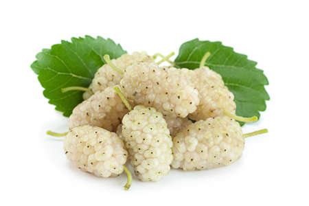 White Mulberry berry closeup isolated on light background Stockfoto
