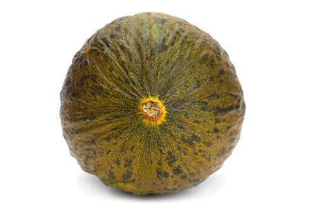 Spinish melon Piel de sapo on white Stockfoto