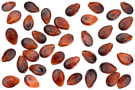 Ripe watermelon seeds set isolated on white