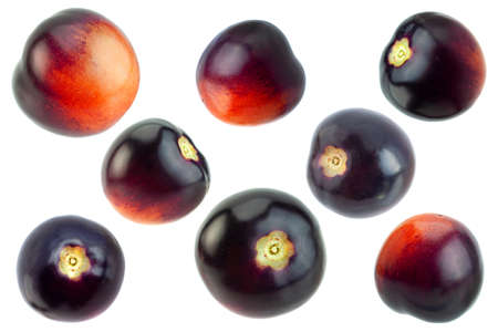 Violet black cherry tomatoes set isolated on white