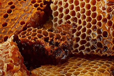 Honeycomb slice closeup texture detail horizontal