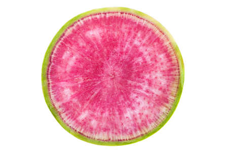Watermelon radish closeup isolated on white