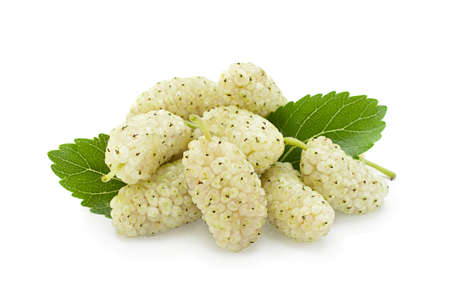 White mulberry with leaf closeup isolated on light background
