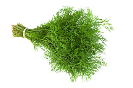 Dill herb bunch isolated on white background Foto de archivo