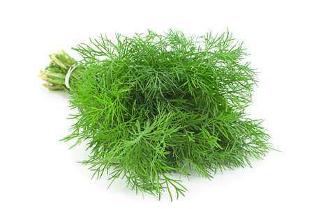 Dill herb bunch isolated on white background