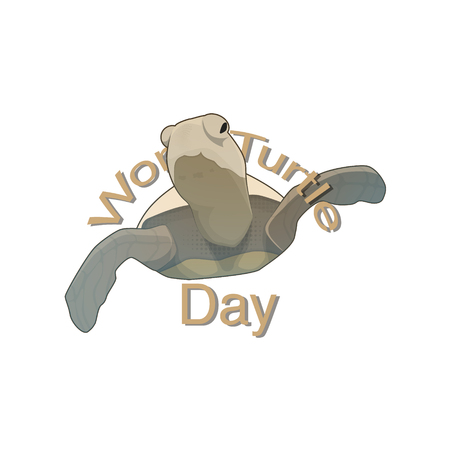 Nice and creative abstract, banner or poster for World Turtle Day on 23rd May. Vector illustration.  イラスト・ベクター素材