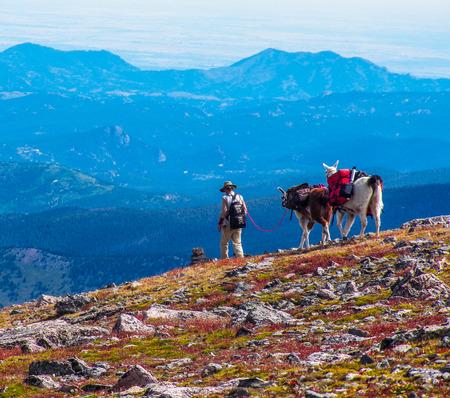 Een geoloog inpakken van de routes in de wildernis van de Rocky Mountains in Colorado