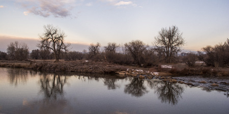 cottonwood tree: Reflection in the Water