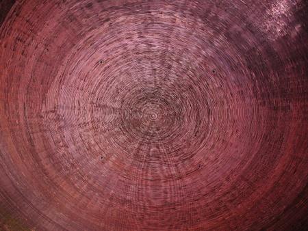 purple ceiling desined like saw-cut of tree photo