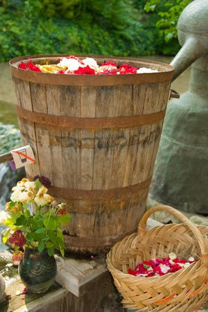 Rose oil production in Bulgaria, land of roses