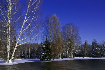 invierno paisaje de bosques, con fusi�n de la nieve Foto de archivo