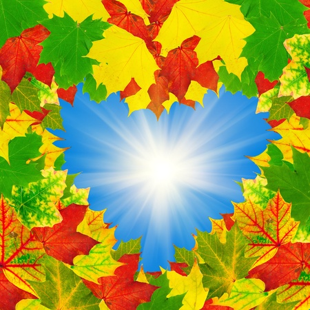 otoño brillante de forma de corazón deja marco contra el cielo azul con sol Foto de archivo