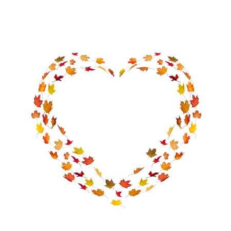 forma de coraz�n hecha por las hojas de oto�o arce aislado en blanco Foto de archivo