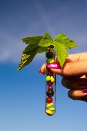 tubos de ensayo con diferentes tabletas multicolores, las bayas de grosella y al aire libre de plantas en el jardín