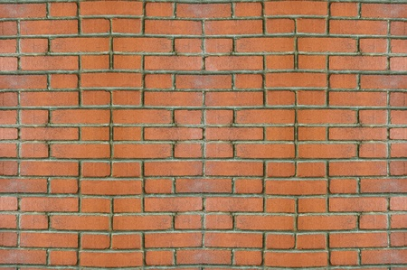 Red Brick Wall iluminada por la luz del d�a