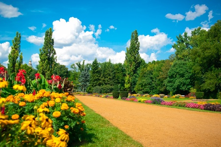 park in Budapest on the Margaret Island Hungary photo