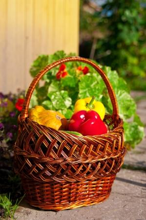 cesta con verduras frescas en un camino Foto de archivo