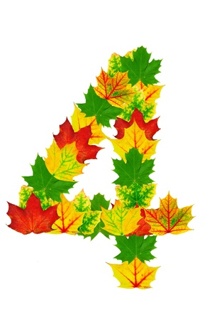 Autumn maple Leaves in the shape of number 4 isolated on white photo