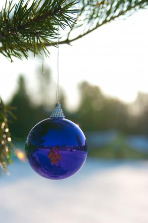 Navidad bola de nieve en un abeto al aire libre Foto de archivo