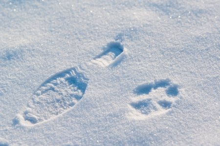 shoeprints on snow photo