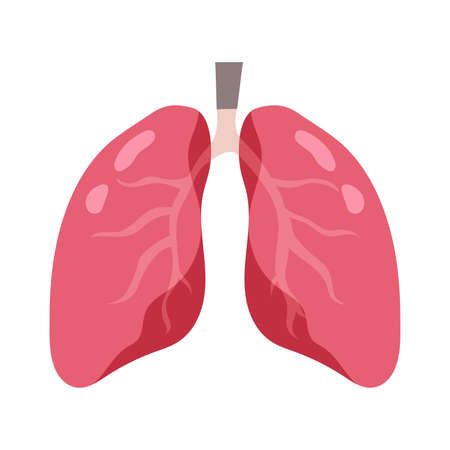 Sign Infographic with Cartoon has Cough, Fever, Sore Throat and Cold in Coronavirus or Covid-19 Outbreak. Healthy lungs and disease lungs. Vector Illustration.
