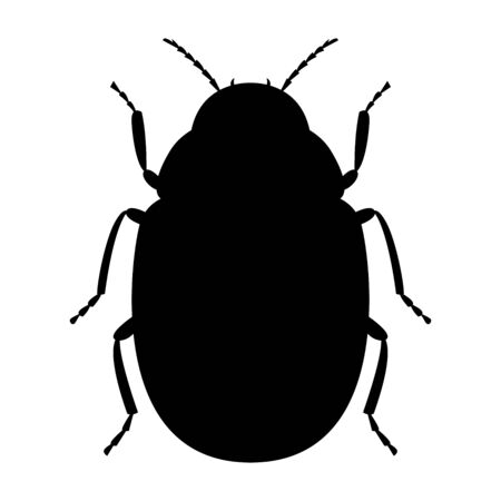 Black silhouette of the Colorado potato beetle on a white background. Vector illustration.