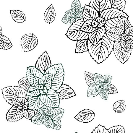 Seamless black and white mint leaves pattern. Vettoriali