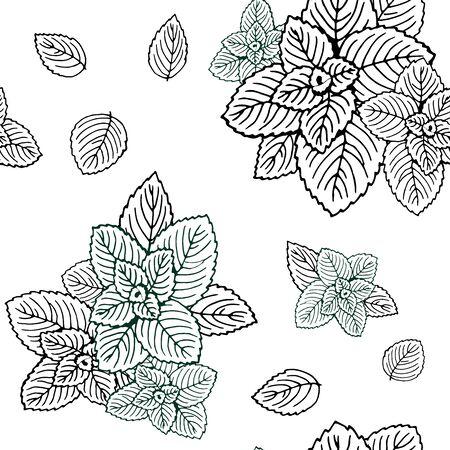 Seamless black and white mint leaves pattern. Vektorové ilustrace