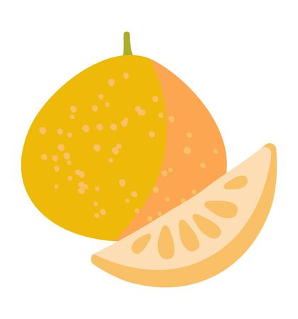 Vector illustration of a pomelo with a slice. Tasty fruit on a white background.Design of fruit shops, vegetarian cafes, menus, fresh fruits, dishes, recipes in flat style.