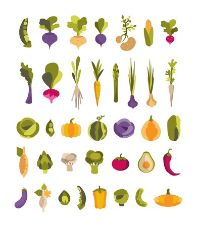 Vector collection with colorful vegetables potatoes, avocado, artichoke, sweet potato and others. Set of 37 illustrations for vegan, gardener, restaurant, greengrocer, print. Stock Illustratie