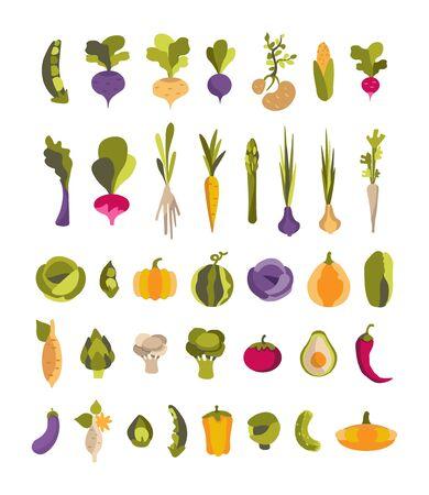 Vektorsammlung mit bunten Gemüsekartoffeln, Avocado, Artischocke, Süßkartoffel und anderen. Set mit 37 Illustrationen für Veganer, Gärtner, Restaurant, Gemüsehändler, Druck. Vektorgrafik