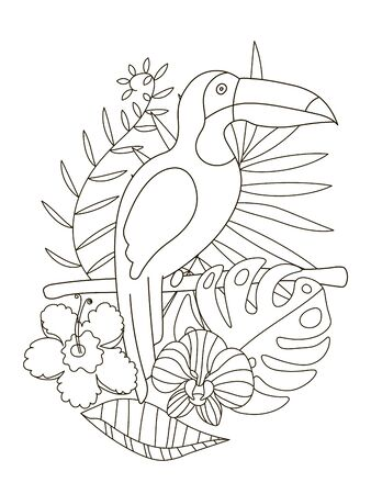 Hand drawing coloring pages for children and adults. A beautiful coloring book in a linear style for creative creativity. Antistress coloring book with toucan, tropical flowers, orchid, monstera, palm. Illustration