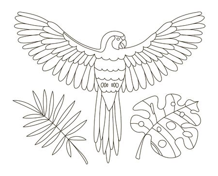 Hand drawing coloring pages for children and adults. A beautiful coloring book with tropics.A parrot flies on a branch among the leaves of monstera. Linear illustration of a jungle with a bird.