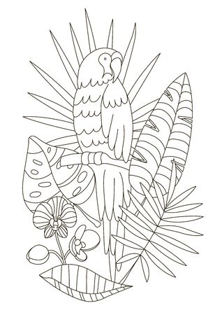 Hand drawing coloring pages for children and adults. A beautiful artwork for creativity. Antistress coloring book with parrot, tropical flowers, orchid, monstera, palm in the jungle.
