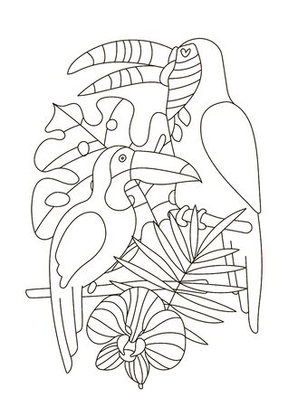Hand drawing coloring pages for children and adults. A beautiful coloring book in a linear style for creative creativity. Antistress coloring book with toucans, tropical flowers, orchid, monstera,palm.