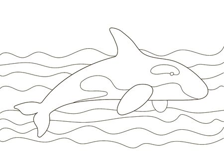 Vector beautiful coloring book for adults and children with a killer whale among the waves. A series of coloring books with marine animals. Minimalism and simple lines, silhouette of fish.Creative biology education. Illustration