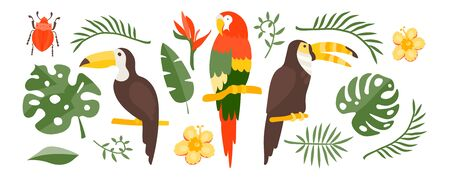 Vector Tropical set of exotic elements in flat style hand drawn. Palm leaves, tropical plants, flowers, leaves, birds, fruits. Warm summer colors and colorful flat graphics. Stickers, website design, articles, travel, print on fabric, clothes. 向量圖像