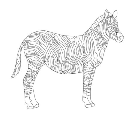 Vector coloring book for children and adults with striped cute zebra.