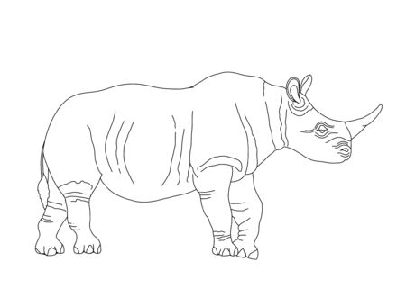 Vector coloring book for children and adults with a rhino.