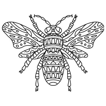 Vector coloring bee with wings with small patterns. Coloring book black and white zentagl patterns small patterns. The insect that makes honey, a beautiful striped bee, apiary logo, farm , a symbol of hard work