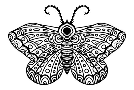 Butterfly moth sketching in lines. Illustration black and white for tattoo, coloring, henna drawing on the body. Stylish zentagl insect. Butterfly with many small details on the wings