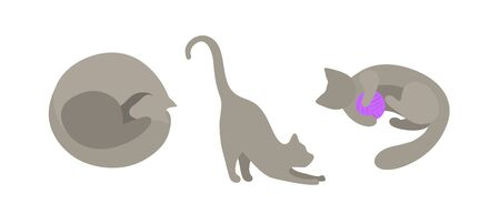 Set of vector silhouettes of gray cats in flat style. The cat curled up and sleeps, the cat stretches its paws forward, the cat plays with a purple ball. Isolated on a white background cats in different poses