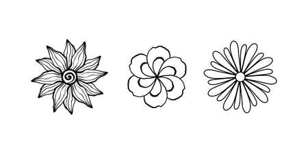 Collection of rustic ornamental plants and flowers. Hand drawn vintage vector design elements. Simple line art style for design of cards, invitations, tags, corporate identity.