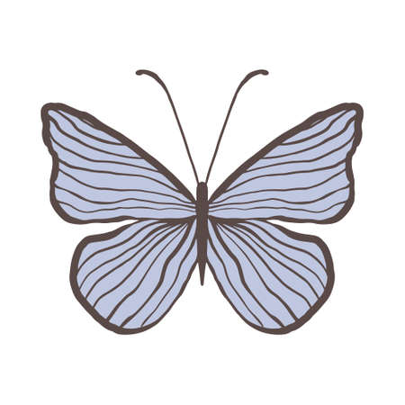 Decorative vintage blue butterfly with thin stripes. Graceful insect on a white background isolated. Vector illustration of an insect with thin antennae. Cute insect on with wings for a graceful and free brand logo 向量圖像