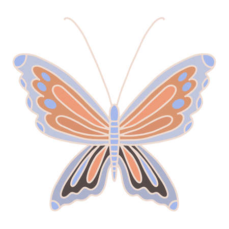 Vector illustration with a multicolored butterfly with small details. A funny insect with wings and spots on them. A print for printing on various media, a beautiful stylized symbol of freedom and lightness. Cute butterfly line and color