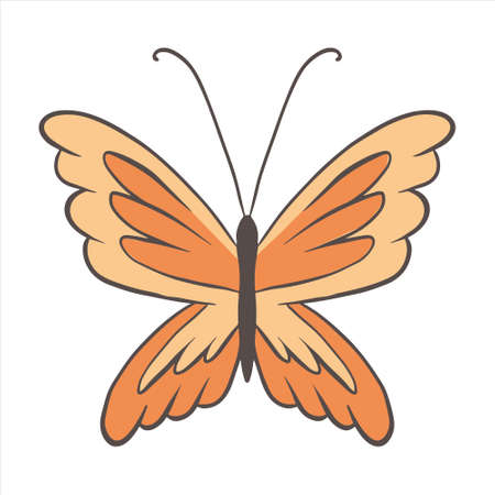 Vector butterfly with large lion-like mane. Redhead insect with orange wings in a cartoon style. Line and color. Design element on white background. 矢量图像