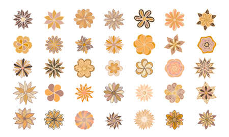 Dusty orange and creamy antique rose, beige and pale flowers, fern, creamy dahlia, buttercup, protea, autumn leaves - big vector collection. Floral bouquets in pastel watercolors. Isolated and editable outline and color
